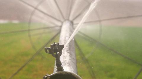 Farm Sprinkler In Slow Motion ビデオ