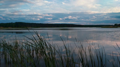 Summer evening at lake with dramatic sky and reflection in water and grass on Footage