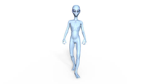 Alien Grey Animation