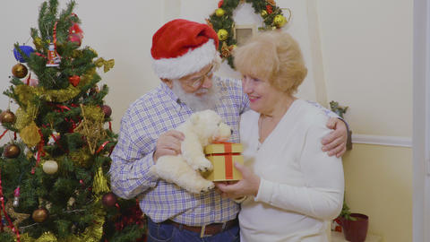 Happy old couple play with presents and white teddy bear near Christmas tree Footage