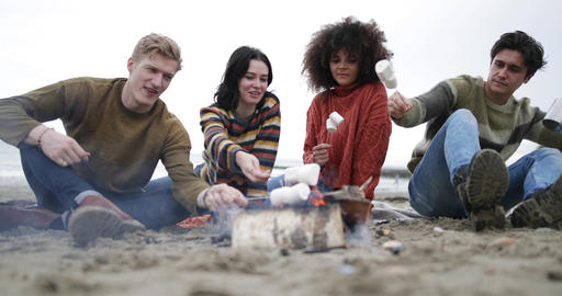 Group of young adult sitting around campfire toasting marshmallows Footage