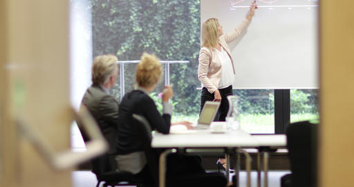 Senior business executive training staff Footage