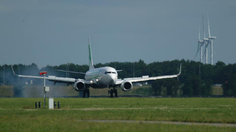Boeing 737 of Transavia airlines landing at Schiphol airport Footage