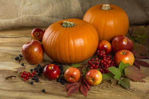 pumpkins, apples, berries フォト