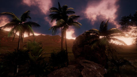 Silhouette of palm trees and a beautiful sunset at tropical mountain landscape Footage