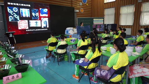 Primary pupils attend a lecture about tie-dye Footage