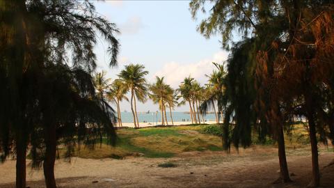 beach jumeirah park time lapse in dubai city Footage