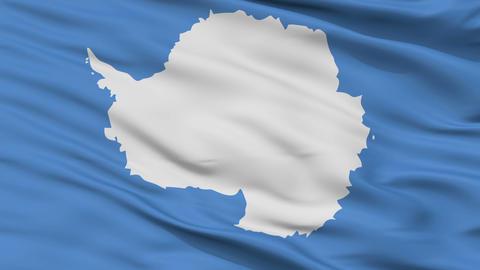 Close Up Waving National Flag of Antarctica Animation