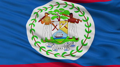 Close Up Waving National Flag of Belize Animation