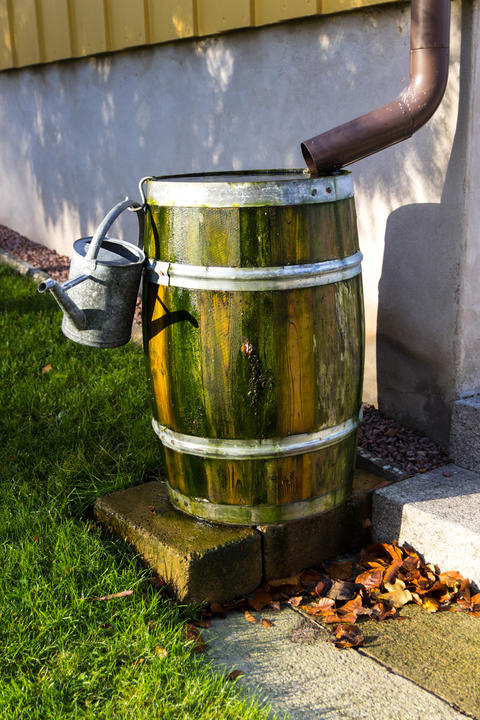 Watering can on barrel フォト