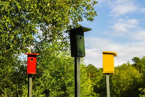 Colorful birdhouses フォト