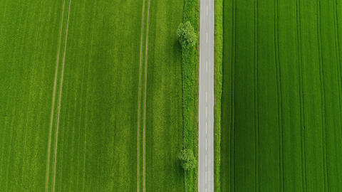 Aerial view of a small country road throught wheat fields Footage