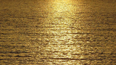Slow Mo. Sparkling sunlight over the calm water. Golden glisten of sunlight Live Action