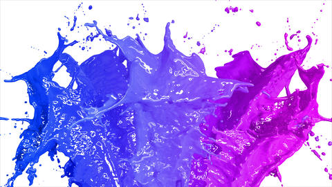 Beautiful Blue and Pink Color Paint Splashes in Slow Motion and Freeze Motion, Animation