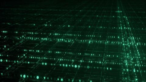 Green grid of binary digital code seamless loop animation Animation