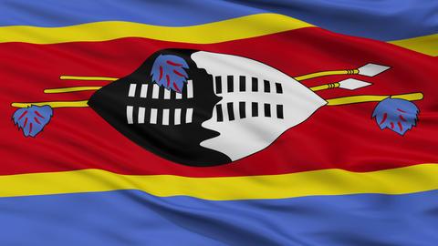 Close Up Waving National Flag of Swaziland Animation