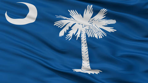 Close Up Waving National Flag of South Carolina Animation