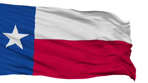 Isolated Waving National Flag of Texas Animation