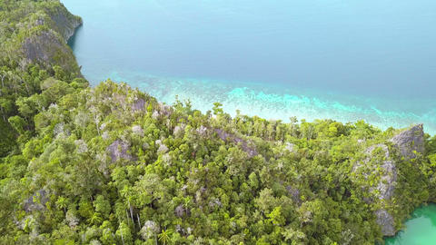 Take Off on a Tropical Island. Aerial View GIF