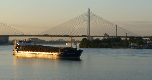 cargo ship at anchor at the cable bridge Footage