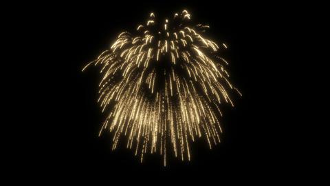 Fireworks_single 3 CG動画