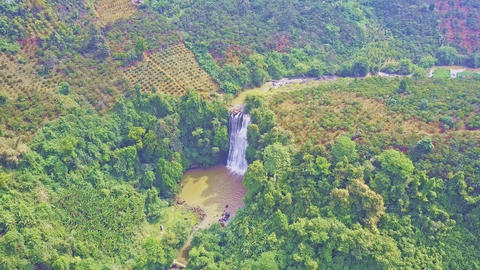 waterfall and lake in bottom among tropical forest Live Action