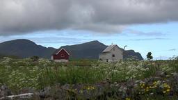 Norway Lofoten islands beautiful landscape and houses around Flakstad Church Footage
