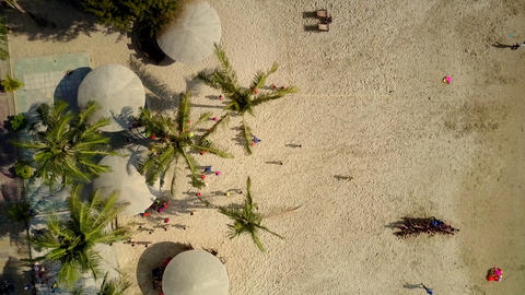 children have fun on beach with parasols and excotic trees Footage