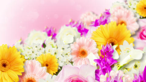 Many colorful flowers background, CG animation, Loop Animation