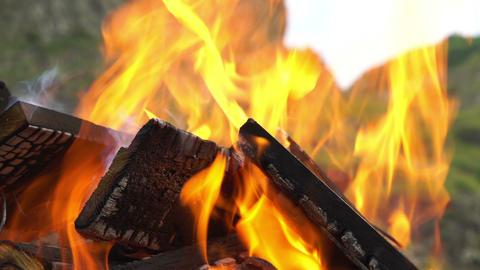 Burning Firewood Footage
