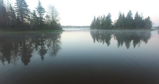 Mist over a Lake in a Forest GIF
