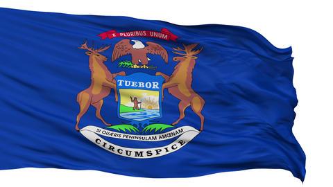 Isolated Waving National Flag of Michigan Animation