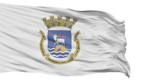 Isolated Waving National Flag of San Juan City Animation