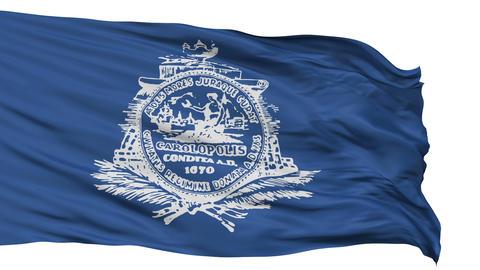 Isolated Waving National Flag of Charleston City Animation