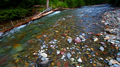 Avalanche Creek Rapids Montana Footage