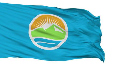 Isolated Waving National Flag of Provo City Animation