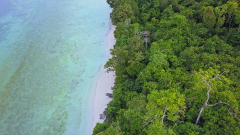 Aerial shot along a tropical coastline Footage