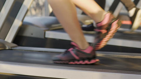 Females running on treadmills in gym, taking care of body, healthy way of life Live Action
