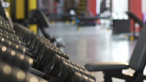 Males taking heavy dumbbells from stand in gym, physical workout, weight lifting Footage