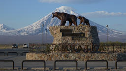Sculpture of Kamchatka brown bear family - she-bear with bear cub. Time lapse Footage