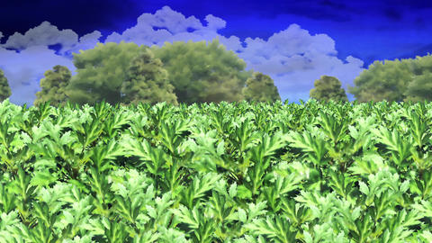 Yomogi weed 3 GIF