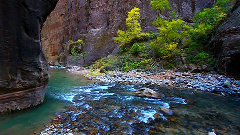 Zion National Park Narrows Footage