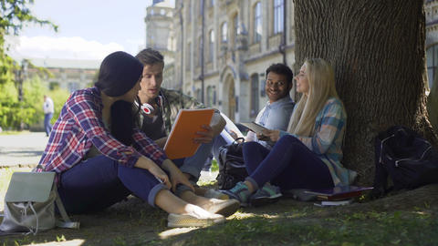 College students having discussion under tree on campus, preparing for exams Footage