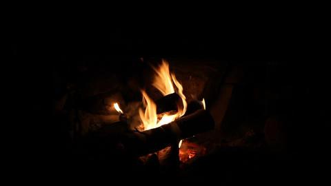 Small cozy campfire Footage