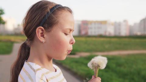 Cute little girl blowing on dandelion on city lawn in summer day Footage