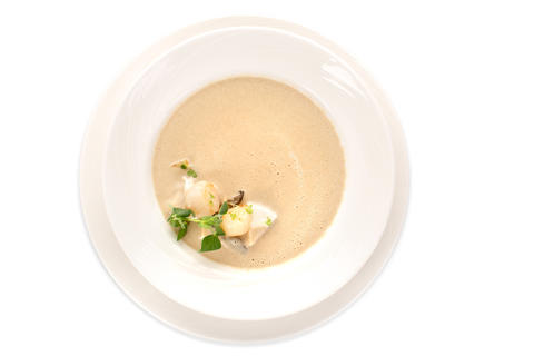 Creamy soup served in white plate フォト