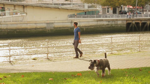 Guy walking along waterfront with his dog running around lawn, bridge over river Footage