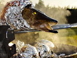 Fresh pike coiled in aluminium foil on barbecue Fotografía