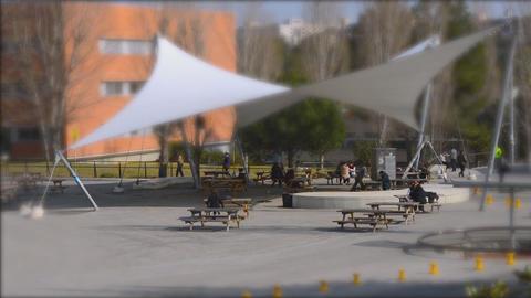 University Campus Students Timelapse Live Action