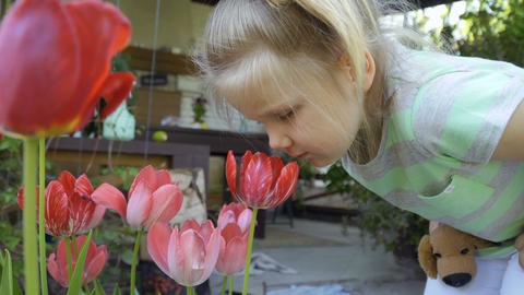 Cute little girl sniff tulips in the garden Footage